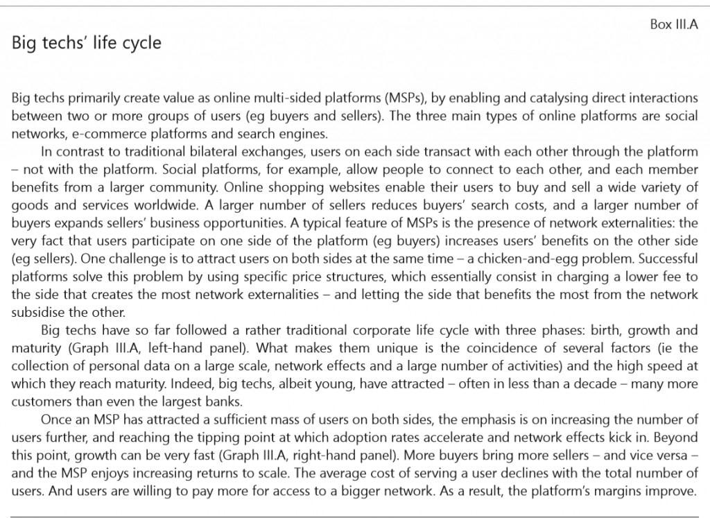 Bank of International Settlements Big Tech Life Cycle